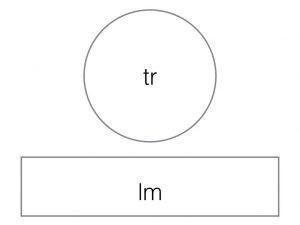 image schema.001